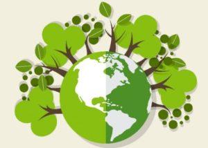 РЭО может заняться мониторингом экологии и деятельности регоператоров